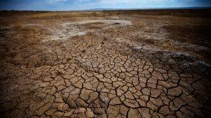 mongolia acqua